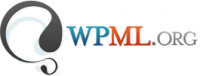 WPML contractors' system features specialized developers to translate your website with professional services